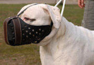 leather dog muzzle for agitation, training, k9 , schutzhund