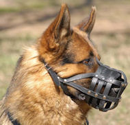 Adjustable Dog Muzzle for German Shepherd-Leather Dog Muzzle M41