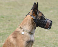 Leather dog muzzle for Malinois-Belgian Malinois Training muzzle