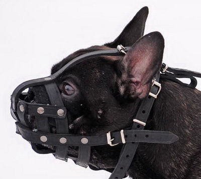 Leather Dog Muzzle for French Bulldog - Small Leather Dog Muzzle