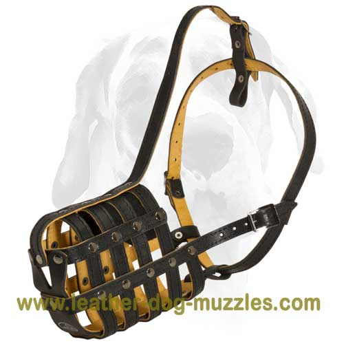Comfortable dog muzzle for large and medium breeds