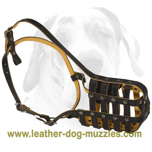 Ultra ventilated dog leather muzzle