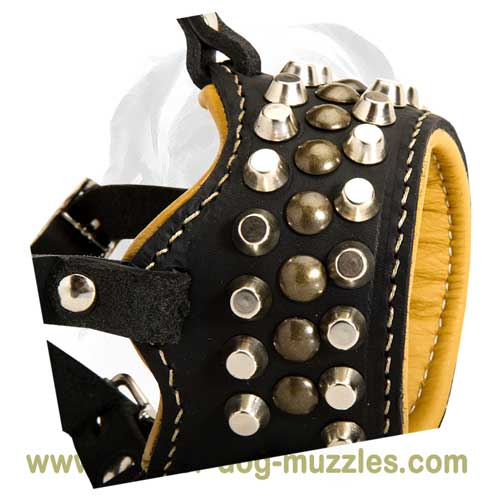 Originally decorated dog leather muzzle
