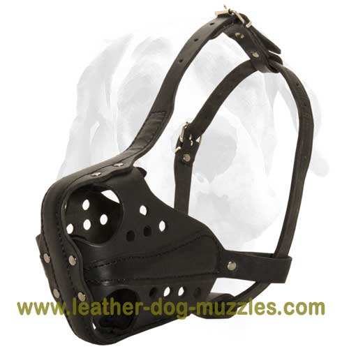 Improved attack dog muzzle
