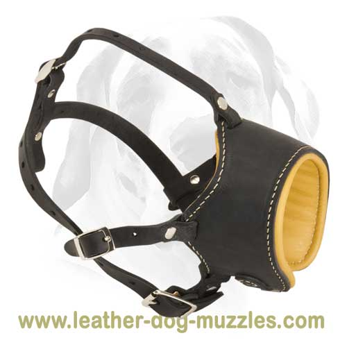 Dog muzzle of full genuine leather