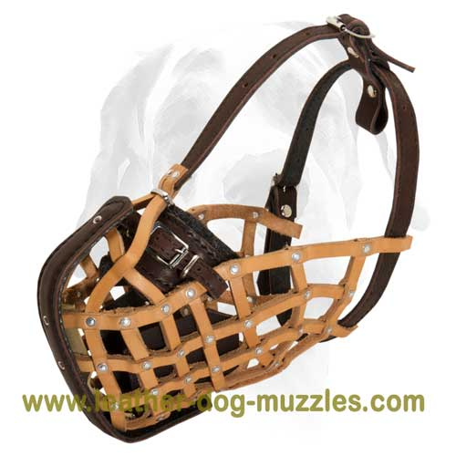 Light weight dog muzzle for agitation training